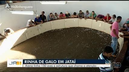 Polícia localiza arena de rinha de galo em Jataí