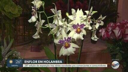 Holambra sedia 28ª edição do Enflor