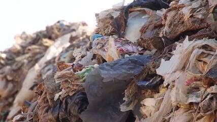 OMS divulga estudo sobre impacto dos microplásticos na saúde