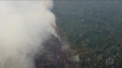 Número de queimadas na Amazônia em 2019 é o maior desde 2010, diz Inpe