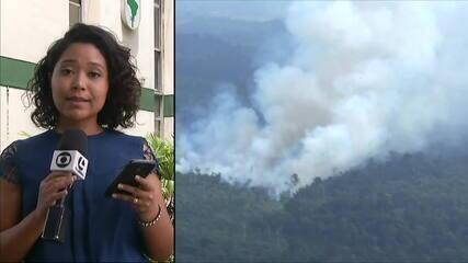 Governo do Pará apresenta plano de ações no combate às queimadas no estado