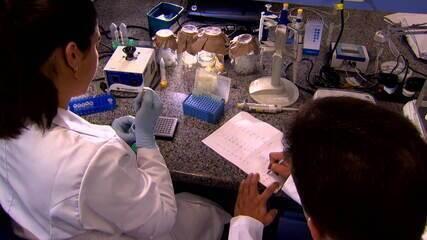 Crise da Capes e do CNPq impacta pesquisas no país