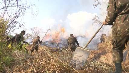 Operação de combate às queimadas embargou área de mil hectares