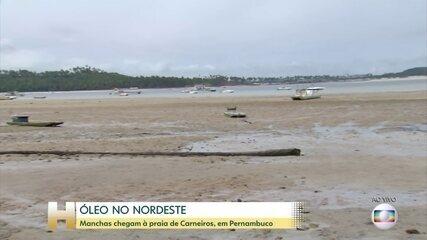 Manchas de óleo chegam à praia de Carneiros, em Pernambuco