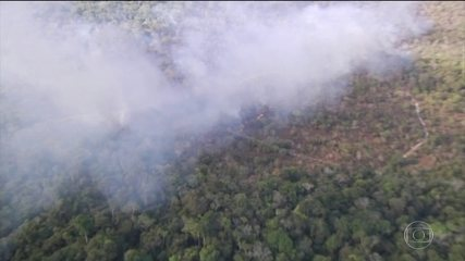 Brigadistas são presos suspeitos de incendiar área de proteção no Pará