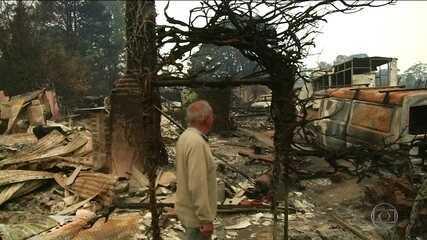 No Sul da Austrália, chuva chega para diminuir as chamas nas florestas