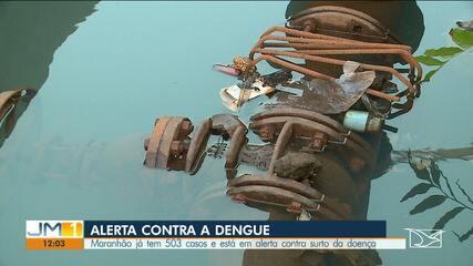 Maranhão registra mais de 500 casos suspeitos de dengue em menos de dois meses