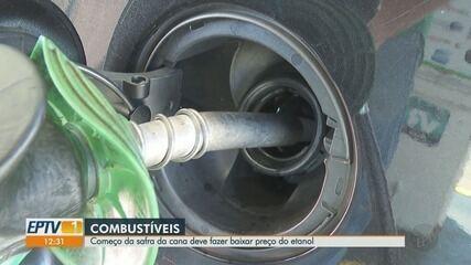 Preço do etanol deve abaixar com o início da safra da cana