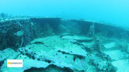 """""""Vai Encarar?"""" mergulha nos destroços do cargueiro Harlingen, que afundou em Arraial"""