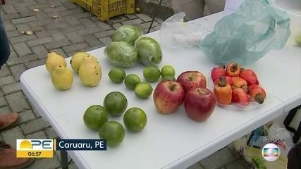 Entenda como deve ser feita a limpeza de frutas ao chegar da feira