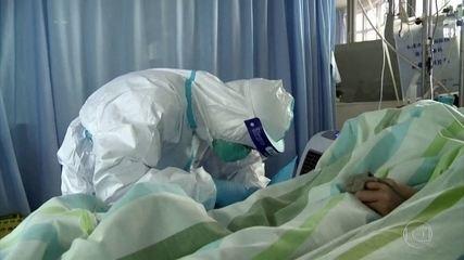 Pesquisadores analisam sangue de curados do coronavírus atrás de tratamento