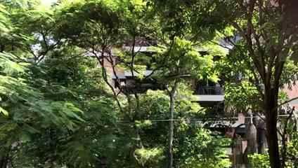 Panelaço contra Bolsonaro no Sumaré