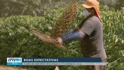 Safra do café 2020 deve chegar a 17 milhões de sacas