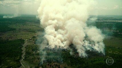 Alertas de desmatamento na Amazônia sobem 22% no ano, aponta dados do Inpe