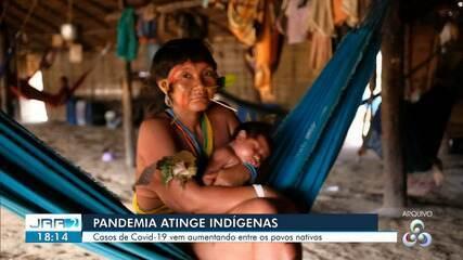 Terra indígena Yanomami é a mais vulnerável ao coronavírus, diz Instituto Socioambiental