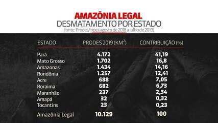 Inpe: desmatamento na Amazônia chega 10mil km quadrados em 2019