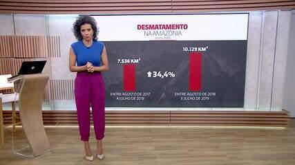 Desmatamento no Brasil: investidores pressionam governo