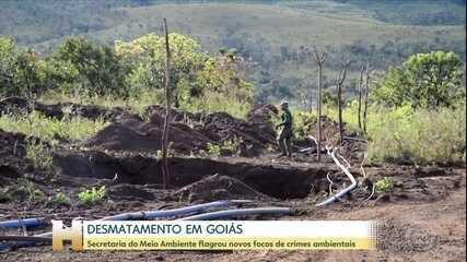 Secretaria do Meio Ambiente de Goiás flagra novos focos de desmatamento