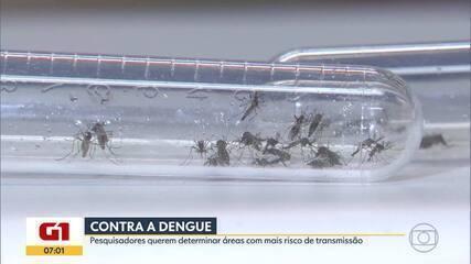 UFMG estuda maneira mais eficaz de monitorar a dengue e prever o aumento de casos