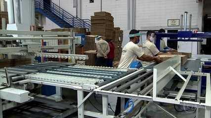Bolsonaro sanciona lei que permite a redução da jornada de trabalho e de salários