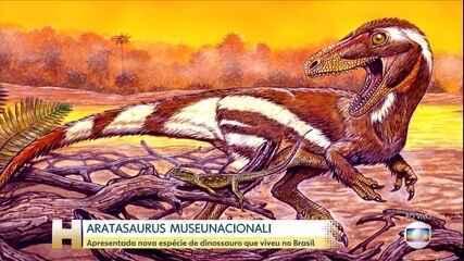 Museu Nacional apresenta fóssil de novas espécies de dinossauros descobertas no Brasil