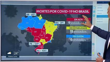 """Pico da pandemia previsto para MG chegou, mas situação deve se converter em """"platô"""""""