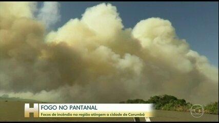 Pantanal sofre maior queimada da história
