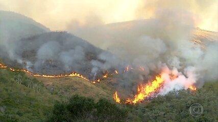 Incêndio florestal na região serrana do Rio tem origem criminosa