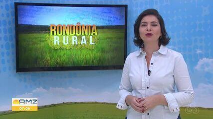 Veja os destaques do Rondônia Rural deste domingo, 2