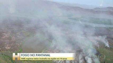 Pantanal registra maior incêndio em 14 anos
