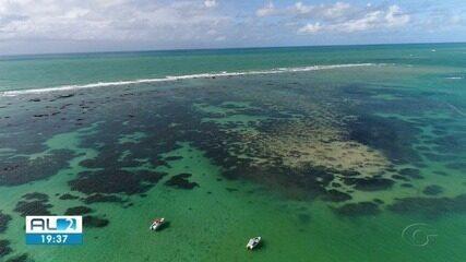 Hotéis e pousadas do litoral norte de Alagoas começam a receber turistas