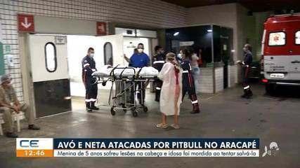 Avó e neta são atacadas por pitbull em Aracapé