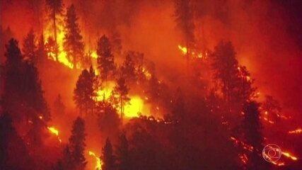Bom Dia Brasil: Incêndio florestal nos EUA já devastou área de mais de 13 mil hectares