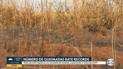 Número de queimadas bate recorde