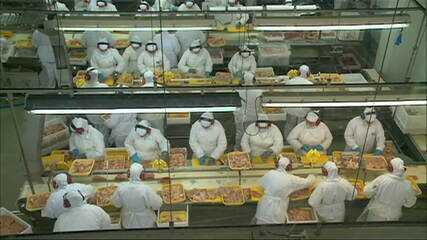 China suspende compras de frango de frigorífico de Santa Catarina