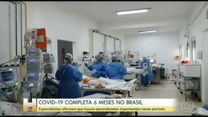 Covid-19 completa seis meses no Brasil