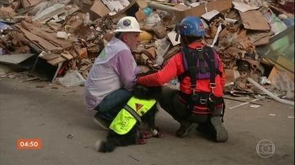 Equipes de resgate retomam buscas por possível sobrevivente em Beirute, no Líbano