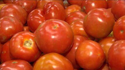 Governo notifica supermercados a explicar alta de preços dos alimentos