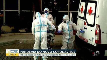 Registro de primeiro caso de coronavírus no CE completa seis meses nesta terça-feira (15)