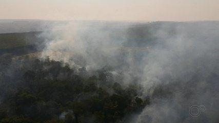 Incêndio atinge área de distribuidora de combustíveis em Bauru; fogo continua na Estação Ecológica