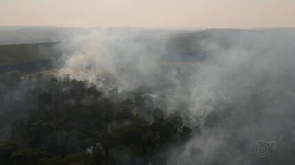 Queimadas castigam áreas de Bauru e especialistas alertam para os perigos à saúde