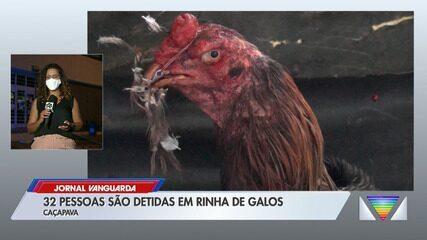 32 pessoas são detidas em rinha de galos em Caçapava