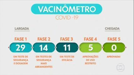 Vacinômetro: acompanhe a corrida pela vacina contra a Covid-19