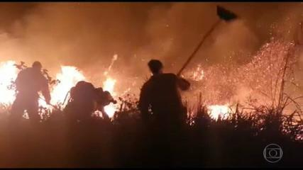 Focos de incêndio diminuem na Chapada Diamantina, na Bahia