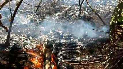 Salles e Ibama suspendem compra de retardante de fogo