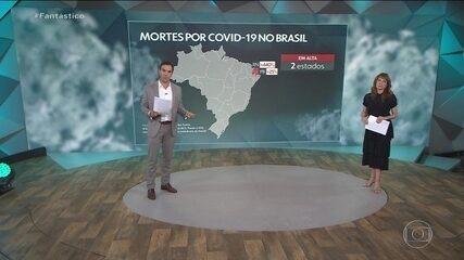 Brasil completa uma semana com a curva indicando queda no número de mortes por Covid