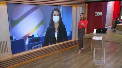 Gata é o primeiro animal a ser contaminado com Covid-19 no Brasil