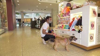 Vlog da Lilica: Pablo Vasconcelos e Lilica curtem dia de lazer em shopping