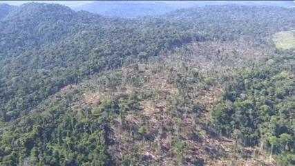 Mineração desmatou mais de 405 km² da Amazônia Legal nos últimos 5 anos