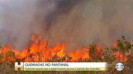 Ação humana foi causa da maioria das queimadas no Pantanal, segundo comissão